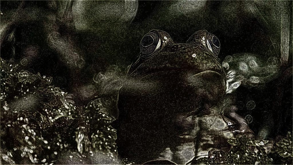 FORÊT D'EXPÉRIMENTATION frosch filmstill